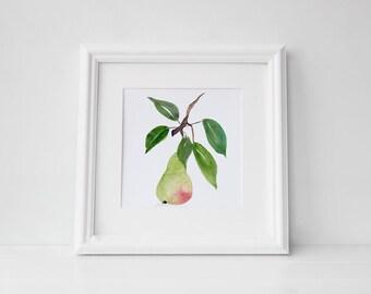 Pera watercolor art print