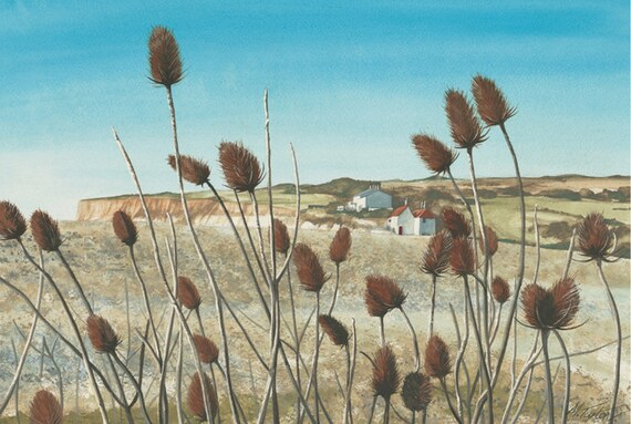 Winter Teasels print, mounted and signed by artist