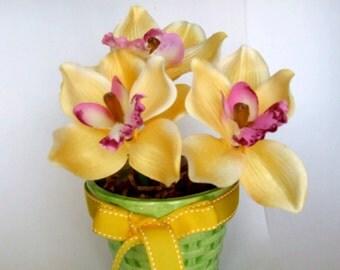 Flower Pens- Cymbidium Orchid, Poppy
