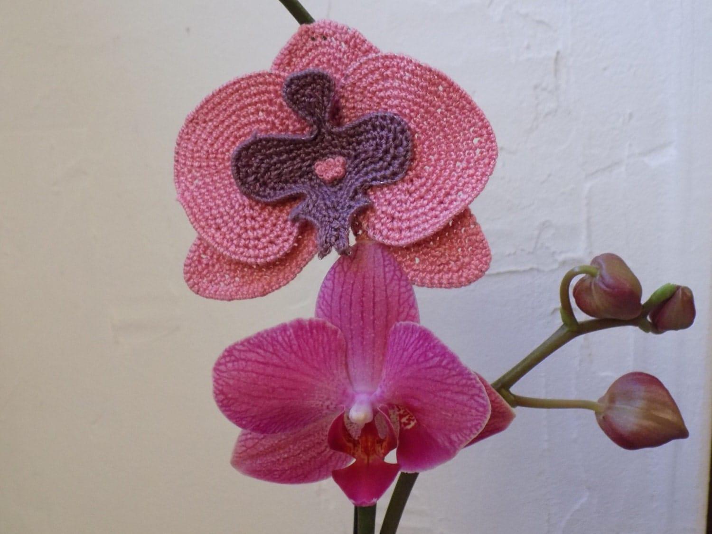Free Crochet Pattern Orchidee : Exotic flowers: crochet pink Orchid Flower brooch/hairpin