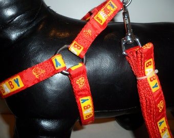 Very Cute Patterned Step In Dog Harness Set, Medium!