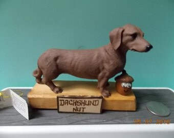 "Dachshund Nut-What are you ""Nuts"" about?"