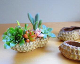 Small peanut vase