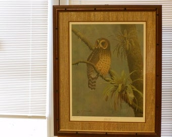 Don R. Eckelberry Mottled Owl (Ciccaba Virgata) Frame House Gallery Signed, Initialed, Dated Limited Edition Print