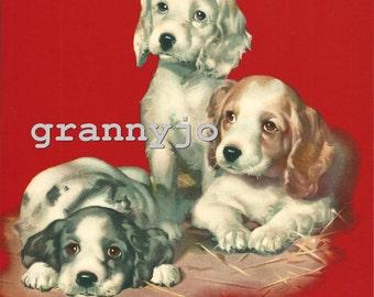 1930s Calendar Art Lithograph Print, Three Of A Kind  Puppies  #1706   8 x 10