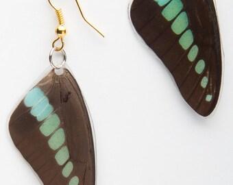 Milon's Swallowtail Butterfly Earrings