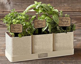Metallic Rectangle 08in Herb Flower Vegetable Garden Stake Plant Markers