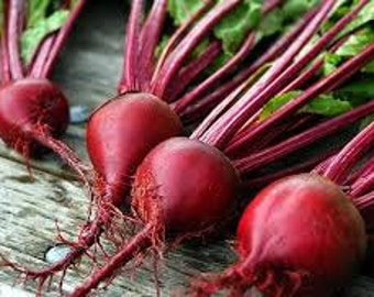 Christmas Beets 16oz - Like Eating Candy!!! - TheSunshineJellyCo