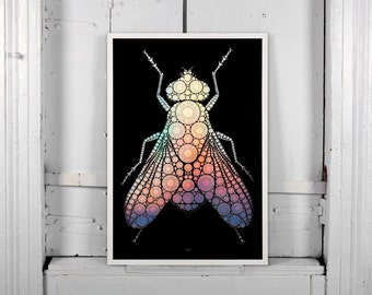 Levi botton fly poster SIGNED