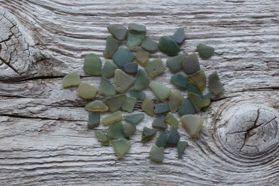 Tiny Olive Green Sea Glass Bulk Beach Glass For Sale From