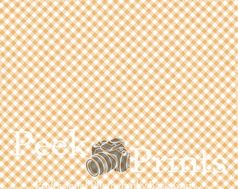 3ft.x3ft Picnic Table Vinyl Photography Backdrop- Photography Prop