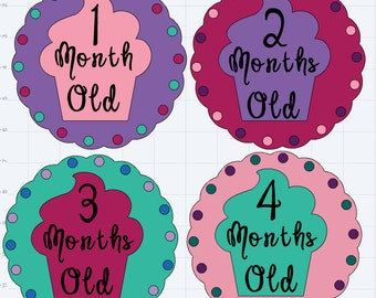 Monthly Onesie Stickers
