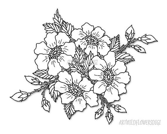 Wild Rose Clipart Floral Clip Art Digital Stamp Flowers