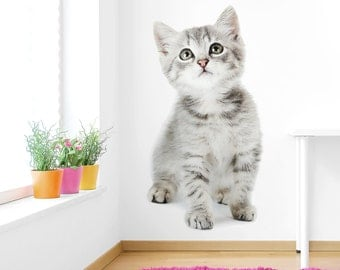 Large Kitten Interior Wall Decal
