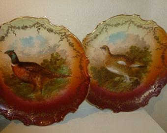 Antique Pair Of Pheasant Decorative Plates