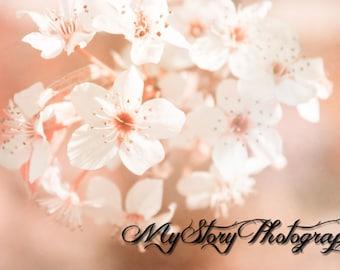 Hazy Pink Flower Print, Nature Photography