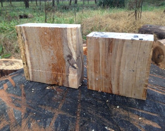Chestnut oak bowl blank pair