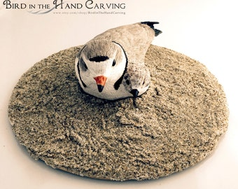 piping plover carving