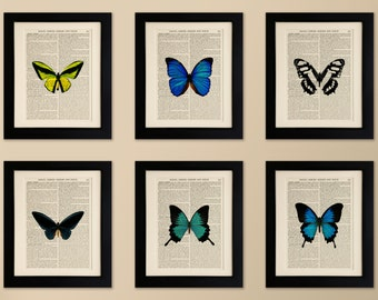 Set of 6 Mounted Art Prints on old antique book page - Butterflies, Vintage Wall Art Print Encyclopaedia Dictionary Page