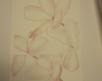 25% Off Entire Store Flowers Frangipani24, original, watercolor, painting