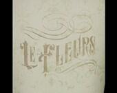 Le Fleurs Word Art Stencil - Select Size - STCL898 by StudioR12