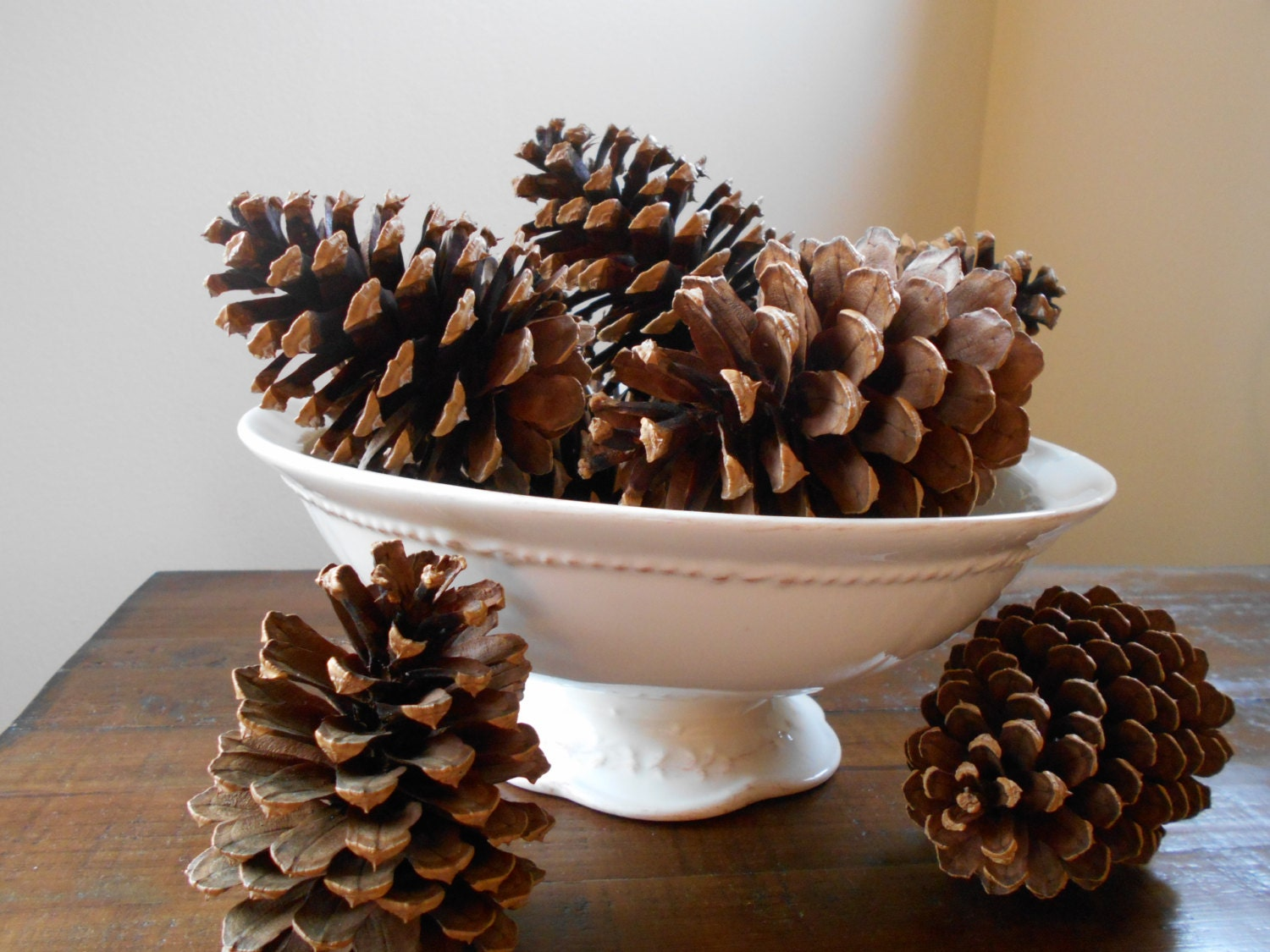 Pine tree pine cones 9 large in natural state for crafts for Large pine cones