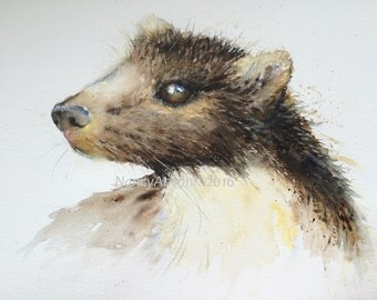 PINE MARTEN Original Watercolour Painting 16x12 Nancy Antoni