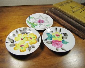 Small Decorative Hand Painted Floral Plates - Set of Three (3)