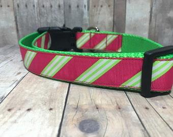 "The Clio | Designer 1"" Width Dog Collar | CupcakePups Collars | Raspberry Lime Stripes | Medium/Large Dog Collar"