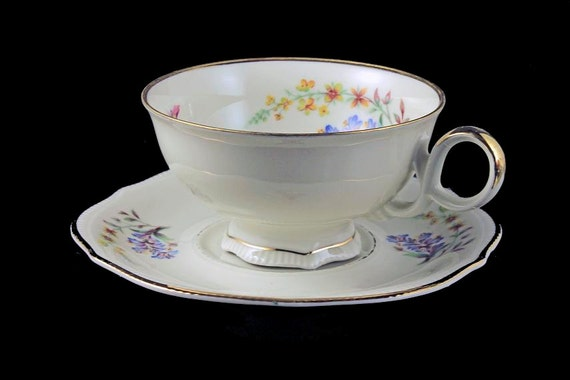 Teacup and Saucer, Bavaria Elfenbein Porzellan, Floral and Insect Pattern, Gold Trimmed