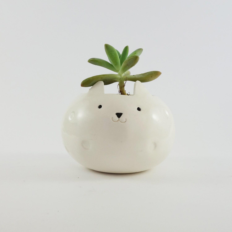 White Planter Fat Cat Plant Pot Ceramic Pot