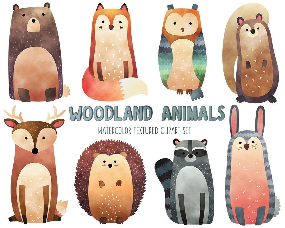 Watercolor Woodland Animals Clipart Cute Animal Clip Art Set