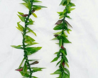 Ti leaf lei- hawaiian lei-graduation lei- gift-beach wedding lei-groom lei-birthday gift-father's day gift lei-everlasting lei- flower lei-