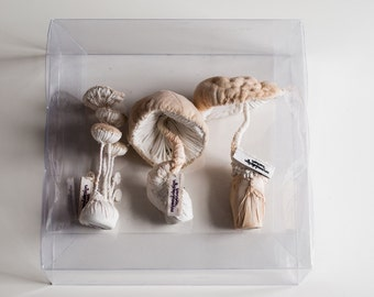 three white mushrooms textiel sculptures