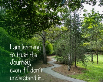 Trusting the Journey