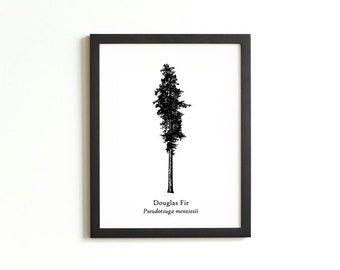 Douglas Fir Tree Silhouette Print | Rustic Wall Art | Woodland Decor