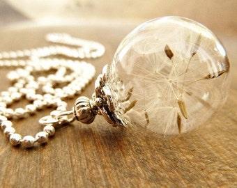 Dandelion Necklace Silver/ Genuine Dandelions