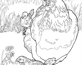 DIGITAL DOWNLOAD Chicken Coloring Pages, Adult Coloring Pages Chicken and Chicks, Bird Adult Coloring Pages, Coloring Pages Digital Download