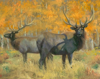Antlers and Aspens