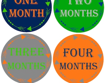 Baby Month Stickers Bodysuit Monthly Stickers Milestone Stickers Monthly Baby Stickers Photo Sticker Month by Month Baby Sticker Shower Gift