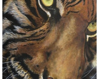 Tiger- Wild Beauty -  Print from Original Acrylic Painting