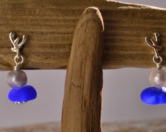 Royal blue genuine sea glass earrings / sweet/Rod sterling silver Freshwater Pearl