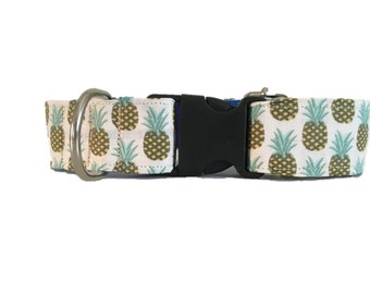 Pineapples with buckle or martingale dog collar