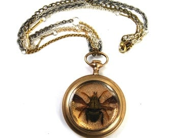 KAFKA CLOCK Steampunk BEE Necklace with Genuine Insect Antique Victorian Rolled Gold Pocket Watch Case and Vintage Lace Crazy Chain Silver