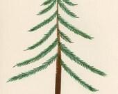Original Gouache Painting / Spruce Tree