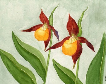 painting original watercolor SFA portrait lady slippers FLOWERS pair