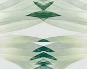 8x12 Proscenium, tropical art, modern art, dorm art, pineapple art, foodie art