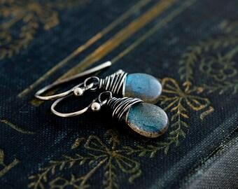 Drop Earrings, Labradorite Earrings, Gemstone Earrings, Sterling Silver, Midnight Blue, Dangle Earrings, Stormy Weather, PoleStar
