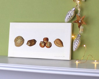 Canvas Print ' Mixed Nuts ' with Walnut, Pecan, Hazel nuts and Almond.