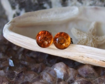 Baltic Amber 6mm Ear Studs Stud Earrings Earings Titanium Posts and Clutches Hypo Allergenic Made in Newfoundland Energy